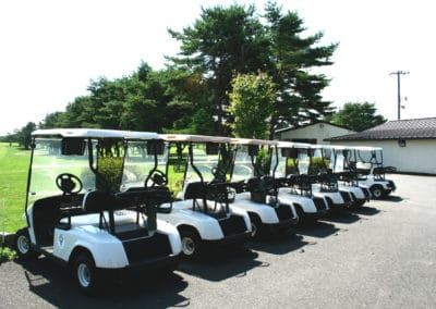 Golf-Carts-Row